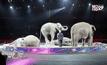 คณะละครสัตว์สหรัฐฯยกเลิกการแสดงช้าง