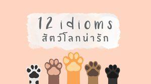 12 สำนวนภาษาอังกฤษ หมวด สัตว์โลกน่ารัก - รู้ไว้ จะได้ไม่งง!