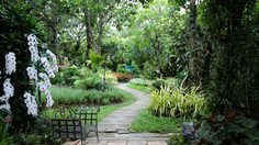 เคล็ดลับ ดูแลสวน ในบ้านแบบง่ายๆให้สวยร่มรื่น