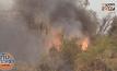 ไฟป่าลามไหม้สวนทุเรียนเสียหายกว่า 100 ล้าน