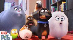 The Secret Life of Pets เปิดตัวอันดับ 1 ปล่อย Finding Dory ว่ายลงไปอันดับ 3 ทันที