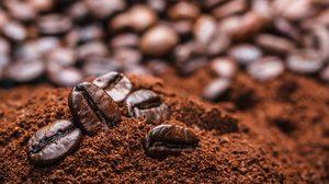 3 ความลับของ กากกาแฟ ที่นำมาใช้ประโยชน์ในบ้านได้