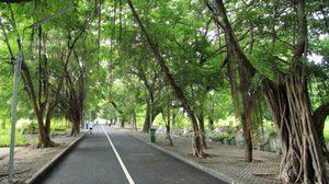 """""""สวนสวยแต้จิ๋ว"""" จากอดีตสุสานสู่แหล่งท่องเที่ยวแห่งใหม่ใจกลางกรุงเทพ"""
