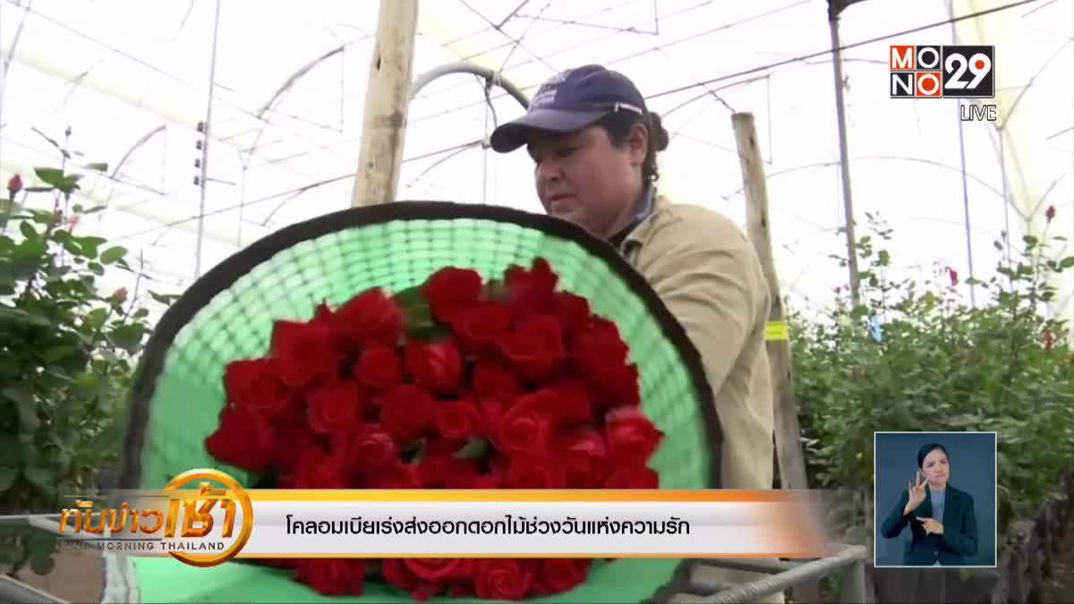 โคลอมเบียเร่งส่งออกดอกไม้ช่วงวันแห่งความรัก