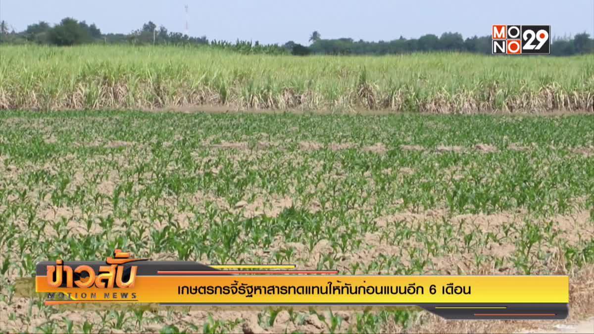 เกษตรกรจี้รัฐหาสารทดแทนให้ทันก่อนแบนอีก 6 เดือน