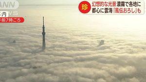 งดงาม ! ทะเลหมอกกลางกรุงโตเกียว ประเทศญี่ปุ่น