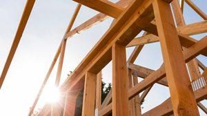 9 ไม้มงคลสำหรับใช้ในพิธียกเสาเอก สร้างบ้านสร้างศาลพระภูมิ