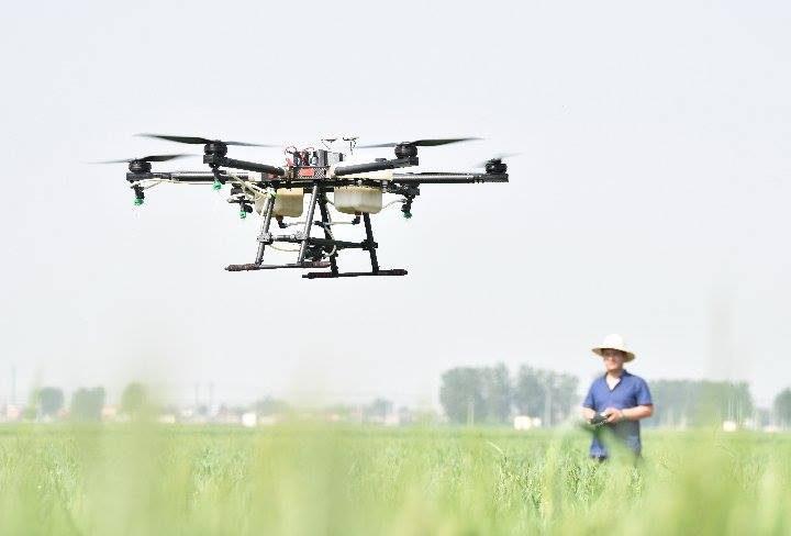 เกษตร 4.0 ของจริง เกษตรกรจีนบินโดรน 'ถ่ายละอองเรณู' ในสวนผลไม้ ประสิทธิภาพ 5 เท่าของแรงงานคน