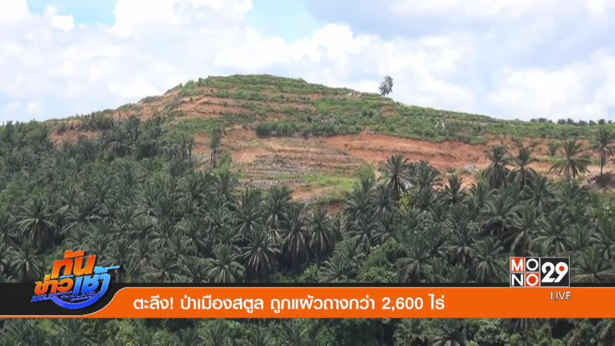 ตะลึง! ป่าเมืองสตูล ถูกแผ้วถางกว่า 2,600 ไร่