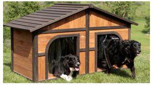 น่าอยู่ไม่แพ้บ้านคน! 9 แบบ บ้านหมานอกบ้าน ดีไซน์เด็ด โดนใจทั้งคนทั้งสุนัข