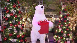 ไปถ่ายหมี ดูไฟ ที่เอ็มควอเทียร์ งาน Winter Wonderland 2019 ฉลองปีใหม่