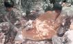 Five minutes Bighero : น.สพ.ภัทรพล มณีอ่อน HERO  ผู้พิทักษ์สัตว์ป่า ตอนที่ 3/5