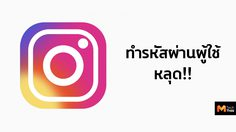 Instagram ทำรหัสผ่านผู้ใช้หลุดผ่านการดาวน์โหลดข้อมูล!!