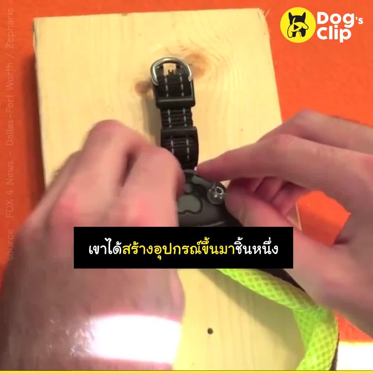 บัดดี้ น้องหมาตาบอดที่ไม่เคยโดดเดี่ยว | Dog's Clip