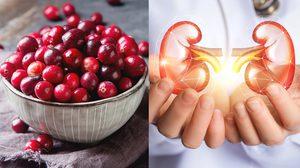 5 อาหารบำรุงไต ให้แข็งแรงกว่าเดิม ช่วยลดความเสี่ยงเป็นโรคไต!!
