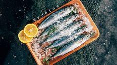 10 ประโยชน์ปลาซาร์ดีน - ในเรื่องเกี่ยวกับสุขภาพ