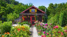 5 ดอกไม้มงคล ความหมายดี แถมยังเพิ่มความสวยงามให้กับบ้าน