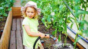 7 ฮวงจุ้ย ปลูกผักสวนครัว กระตุ้นพลังงานดีในรั้วบ้าน