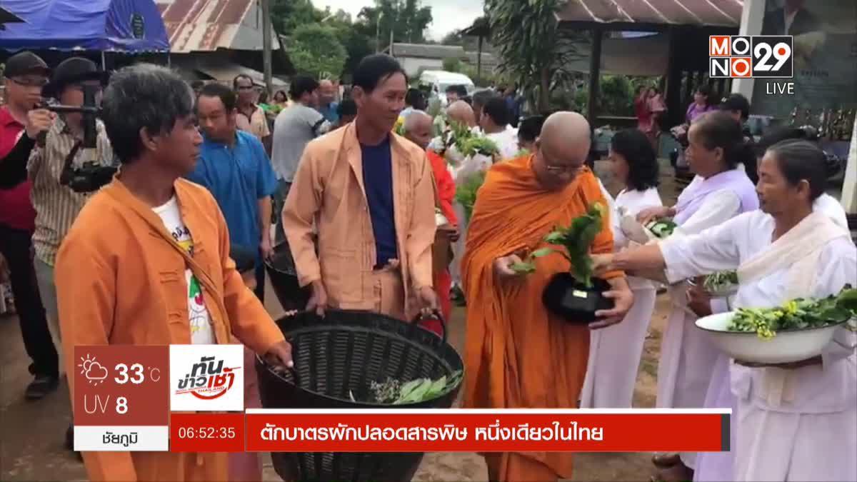 ตักบาตรผักปลอดสารพิษ หนึ่งเดียวในไทย