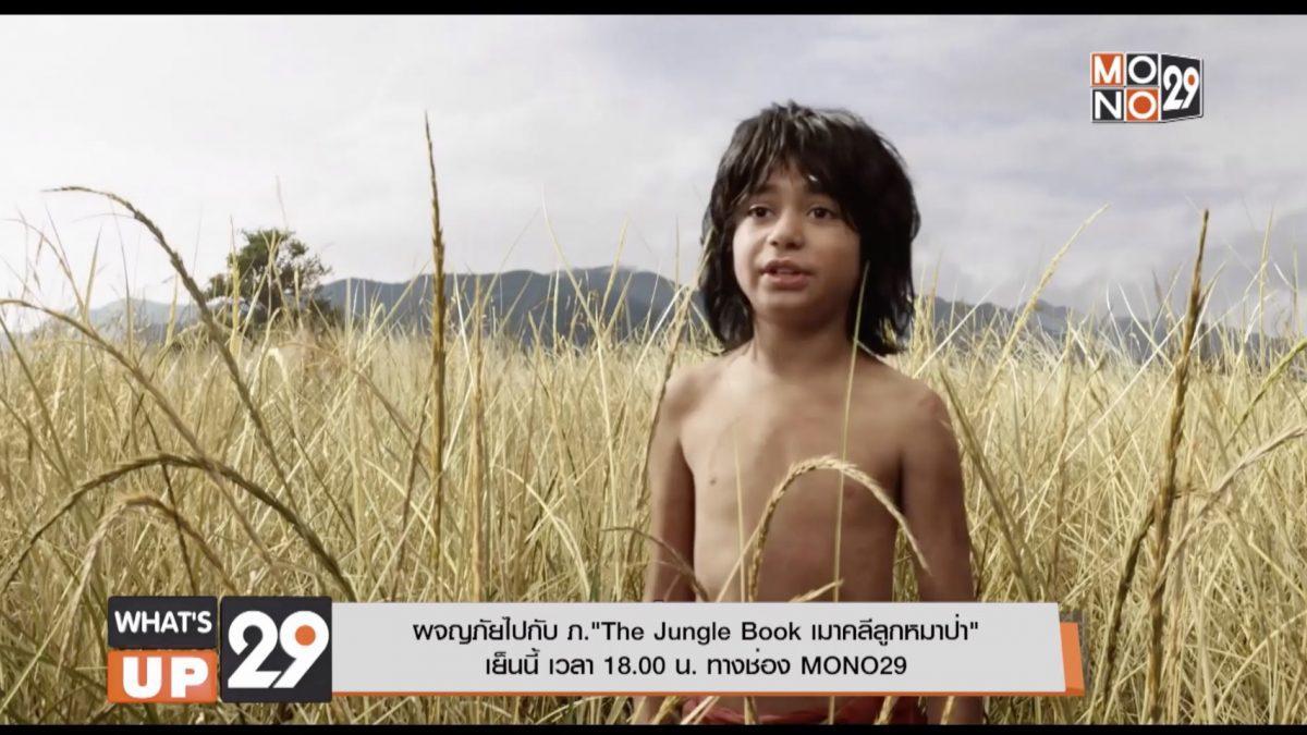 """ผจญภัยไปกับ ภ.""""The Jungle Book เมาคลีลูกหมาป่า""""เย็นนี้ เวลา 18.00 น. ทางช่อง MONO29"""
