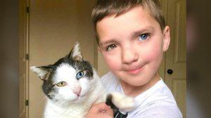 หนูน้อยแมดเดน และแมวน้อยมูน มีตาสองสีโดยบังเอิญ จนกลายเป็นเพื่อนซี้