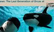 SeaWorld ในสหรัฐฯ จะเลิกเลี้ยงวาฬเพชฌฆาต