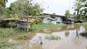 'ป้ามนุษย์น้ำ' บ้านจมบาดาลนับ 10 ปี หลังถูกนายทุนกว้านซื้อที่ถมดินสูงรอบบ้าน