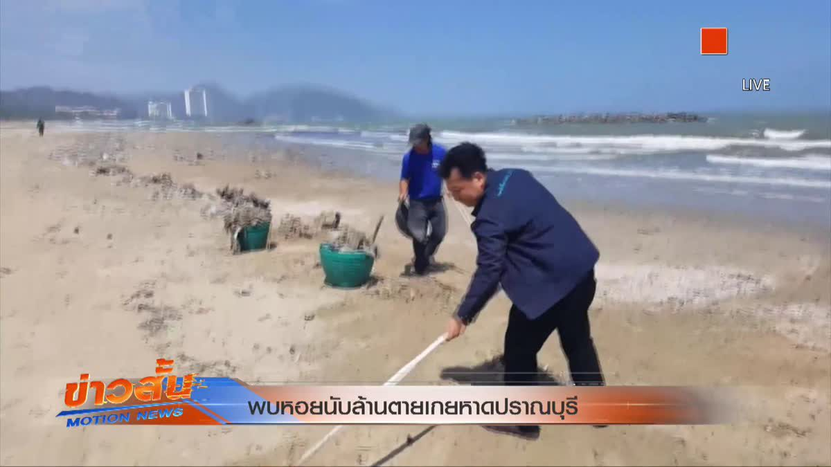 พบหอยนับล้านตายเกยหาดปราณบุรี
