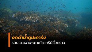 งดกิจกรรมดำน้ำดูปะการังรอบเกาะจาน-เกาะท้ายทรีย์ชั่วคราว