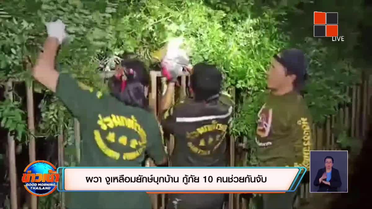 ผวา งูเหลือมยักษ์บุกบ้าน  กู้ภัย 10 คนช่วยกันจับ