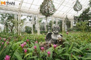 """อุทยานไม้ดอก """"เพ ลา เพลิน"""" จังหวัดบุรีรัมย์"""