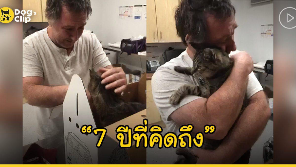 คำอธิษฐานที่เป็นจริง! น้องแมวเหมียวคืนสู่อ้อมกอดเจ้านายได้อีกครั้งในวัย 19 ปี หลังหายไปร่วม 7 ปี