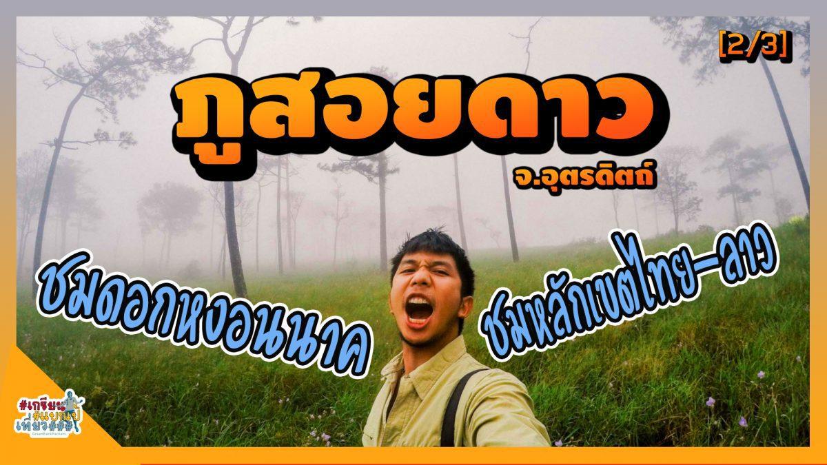 ภูสอยดาว (2/3) ชมดอกหงอนนาคบนลานสน บุกถิ่นหลักเขตไทย-ลาว