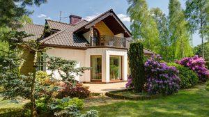 4 ต้นไม้ปลูกหน้าบ้าน ความหมายดีช่วยทำให้บ้านร่มรื่นและเย็นสบาย