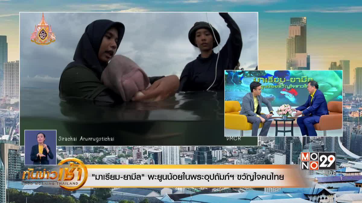 """""""มาเรียม-ยามีล"""" พะยูนน้อยในพระอุปถัมภ์ฯ ขวัญใจคนไทย"""