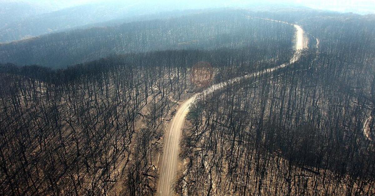 ไฟป่าออสเตรเลียเสียหาย 2 ล้านล้านบาท