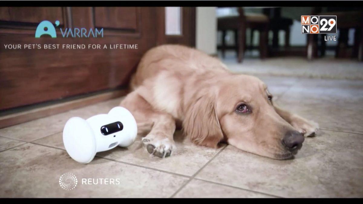 29 LifeSmart : หุ่นยนต์เพื่อนมนุษย์-สัตว์เลี้ยง