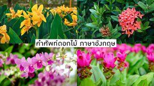 คำศัพท์เกี่ยวกับดอกไม้ ภาษาอังกฤษ