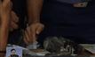 พบระเบิดใกล้กับสถานทูตสหรัฐฯ ในฟิลิปปินส์
