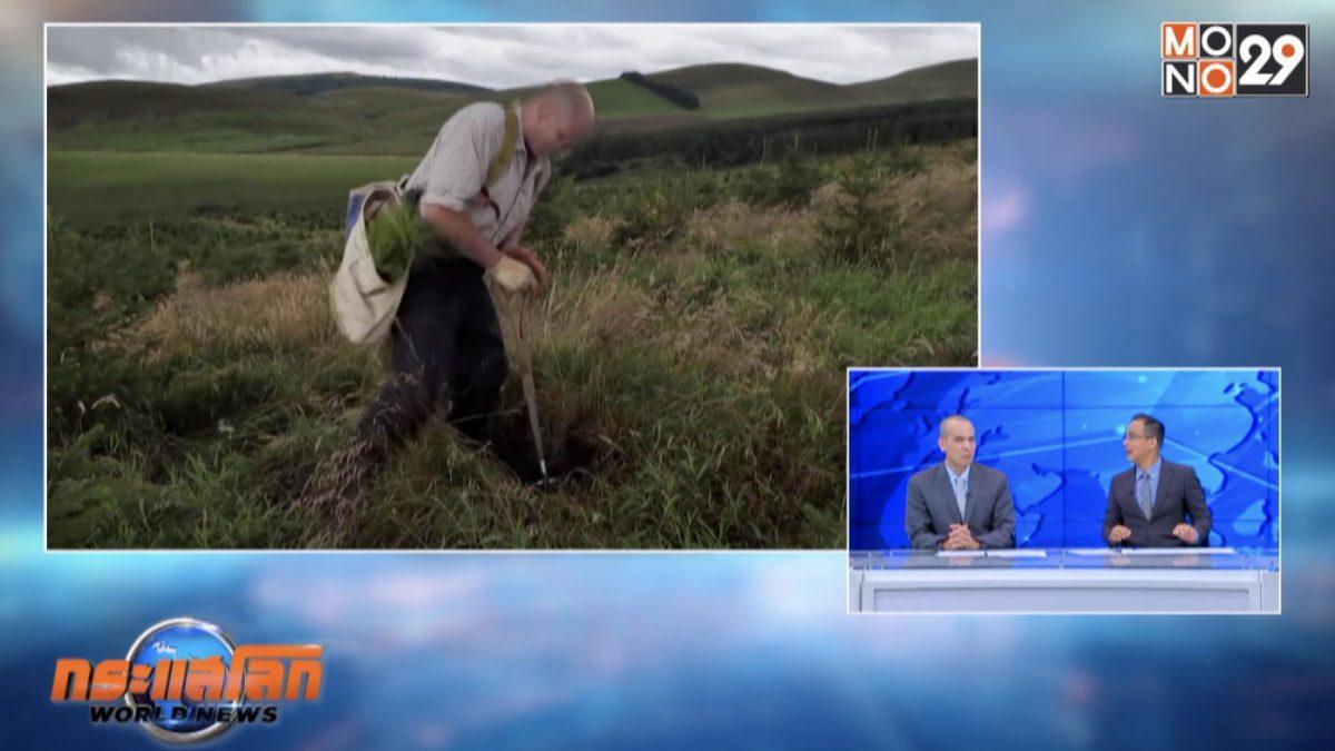 สกอตแลนด์ปลูกต้นไม้ลดโลกร้อน