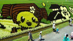 18 Rice Paddy Field Art Photos in Japan