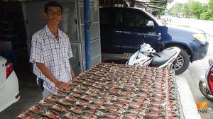 ปลาเค็มกางมุ้งพลังงานแสงอาทิตย์ ประหยัดเวลา-ค่าใช้จ่าย รายได้วันละหมื่น!