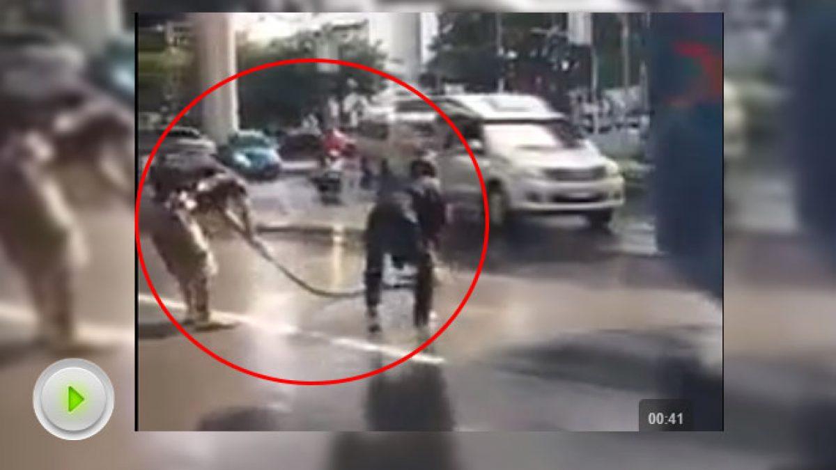 พลเมืองดี จับงูเหลือม ยาว 4 เมตรกลางถนน (14-10-60)