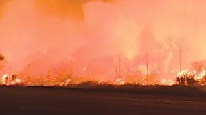 ไฟไหม้ป่าแคลิฟอร์เนีย ขยายวงกว้าง บ้านเรือน-ป่าเสียหายยับ