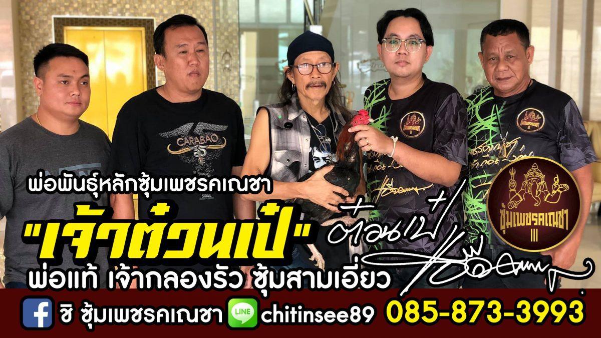 เจ้าต๋วนเป๋ เพชรคเณชา จ.นครสวรรค์ จอมรัวหลังแข้ง 12 ชั้น Cock fighting Thailand
