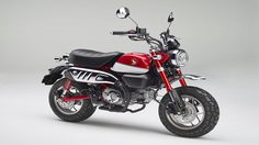 Honda เตรียมส่ง Monkey เเละ Super Cub ลุยตลาดอเมริกา