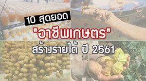 10 สุดยอด อาชีพเกษตร สร้างรายได้ ปี 2561