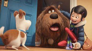 ภาคต่อมาแน่! The Secret Life of Pets 2 เตรียมเข้าฉายในปี 2018