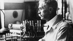 ประวัติคาร์ล แลนด์สไตเนอร์ ผู้ค้นพบระบบกรุ๊ปเลือด ABO