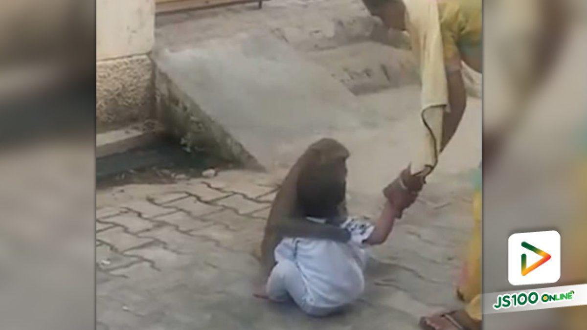 เจ้าลิงพาเบบี๋ไปเล่นด้วยแถมกอดไว้แน่นไม่ยอมคืน (20-02-62)